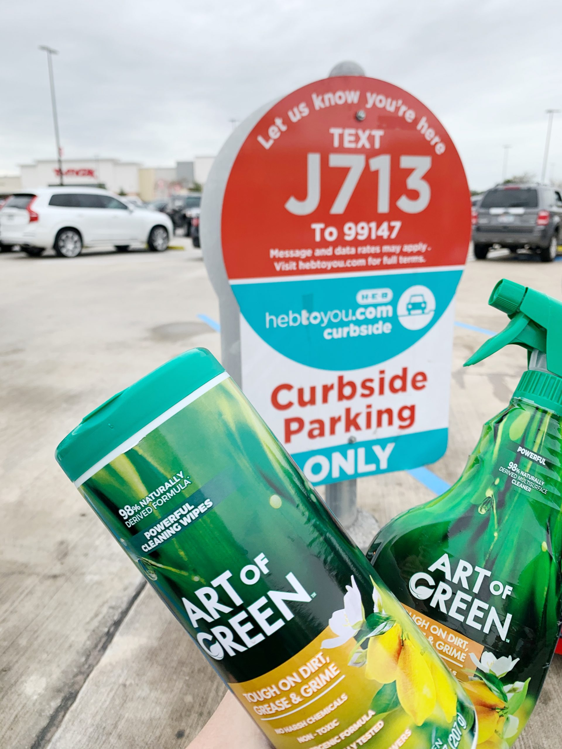 Art of Green cleaning products at HEB