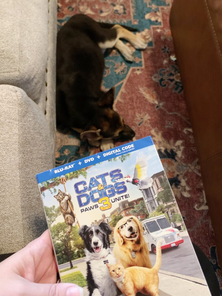 Cats & Dogs 3: Paws Unite! Movie